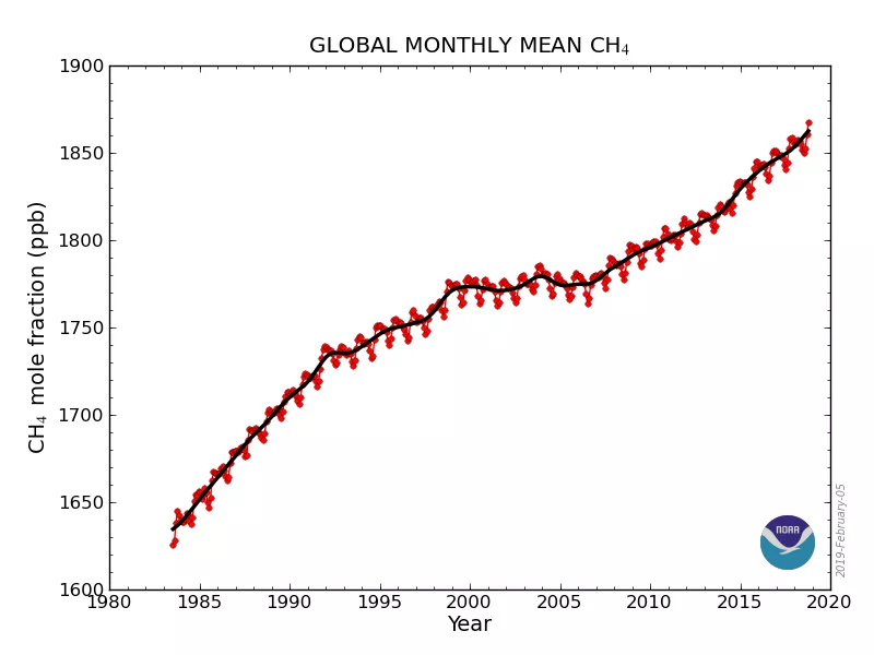 Global monthly mean atmospheric methane 1984-2018. Graphic: NOAA