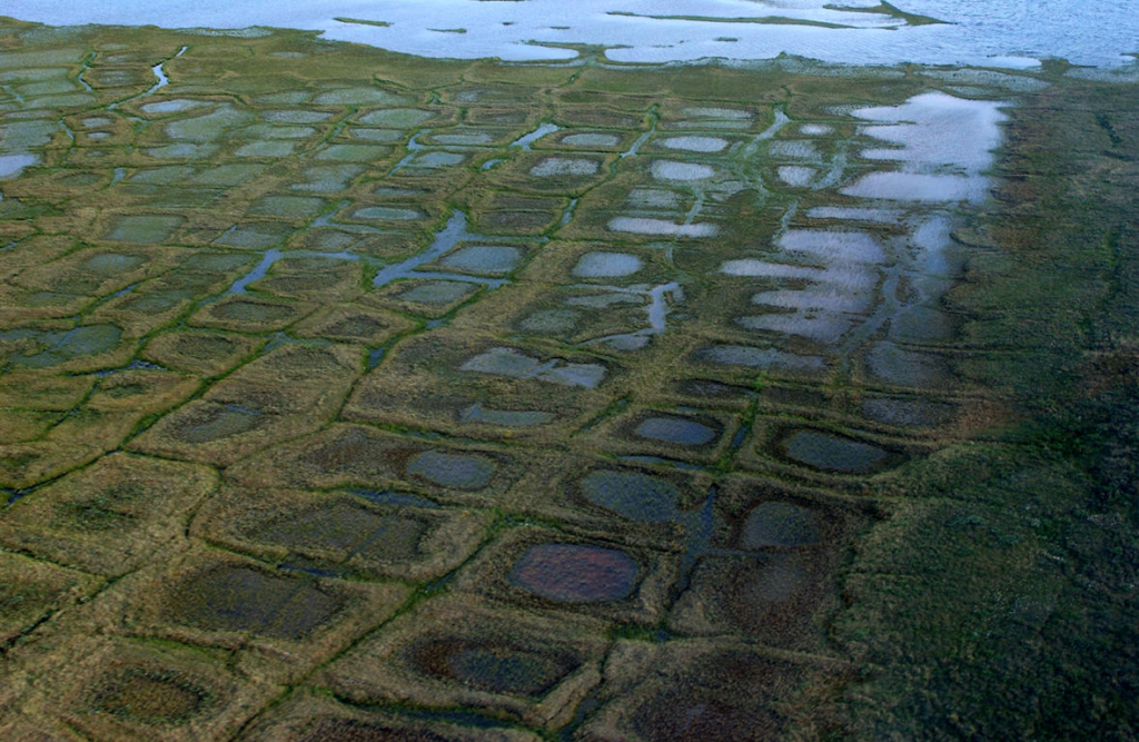 Permafrost forms a grid-like pattern in the National Petroleum Reserve-Alaska in Alpine, Alaska, a 22.8 million acre region managed by the Bureau of Land Management on Alaska's North Slope. USGS has periodically assessed oil and gas resource potential there. Photo: David Houseknecht / USGS