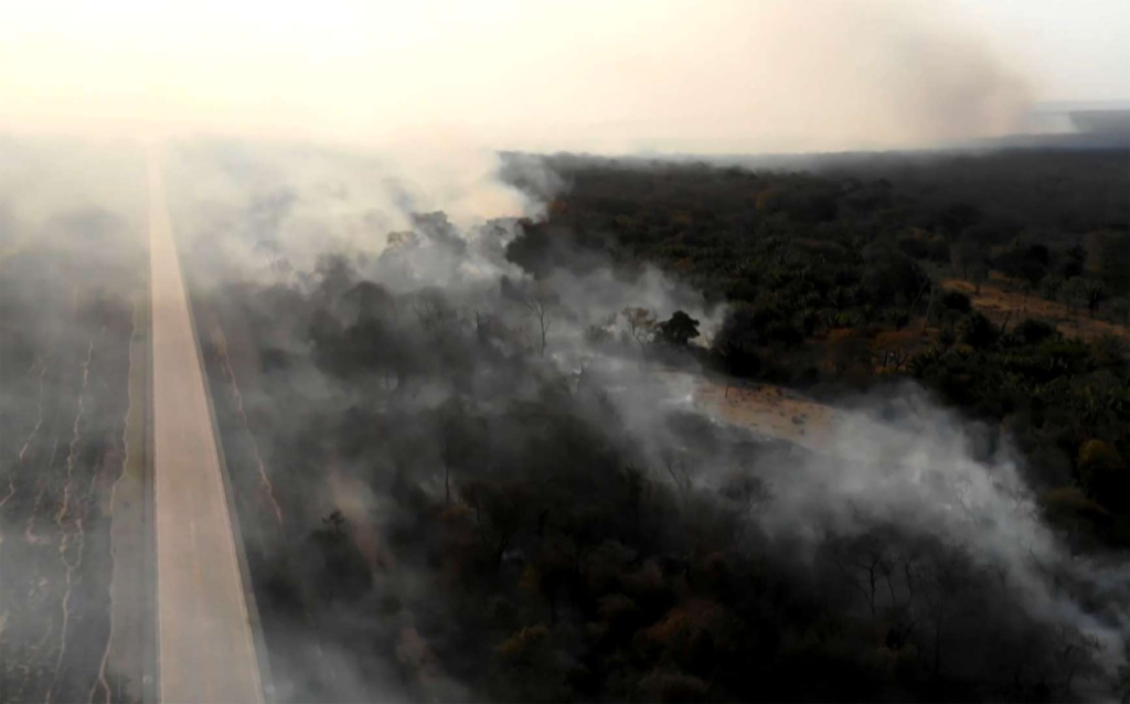 "Screenshot showing wildfire near Robore, Santa Cruz region, eastern Bolivia on 21 August 2019. Up to now, wildfires in Bolivia have devastated about 745,000 hectares of forests and pasturelands. Neighboring Peru, which contains much of the Amazon basin, announced it was ""on alert"" for wildfires spreading from the rainforest in Brazil and Bolivia. Photo: AFP / Getty Images"