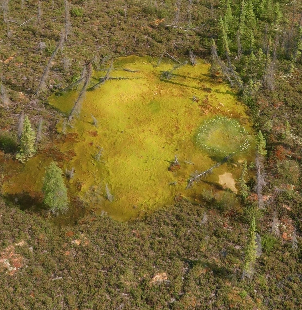 "Aerial view of a sinkhole caused by rapid permafrost thawing. Abrupt thawing is ""fast and dramatic"" and it ""affects landscapes in unprecedented ways"" says Dr. Merritt Turetsky. Photo: Dr. Merritt Turetsky"